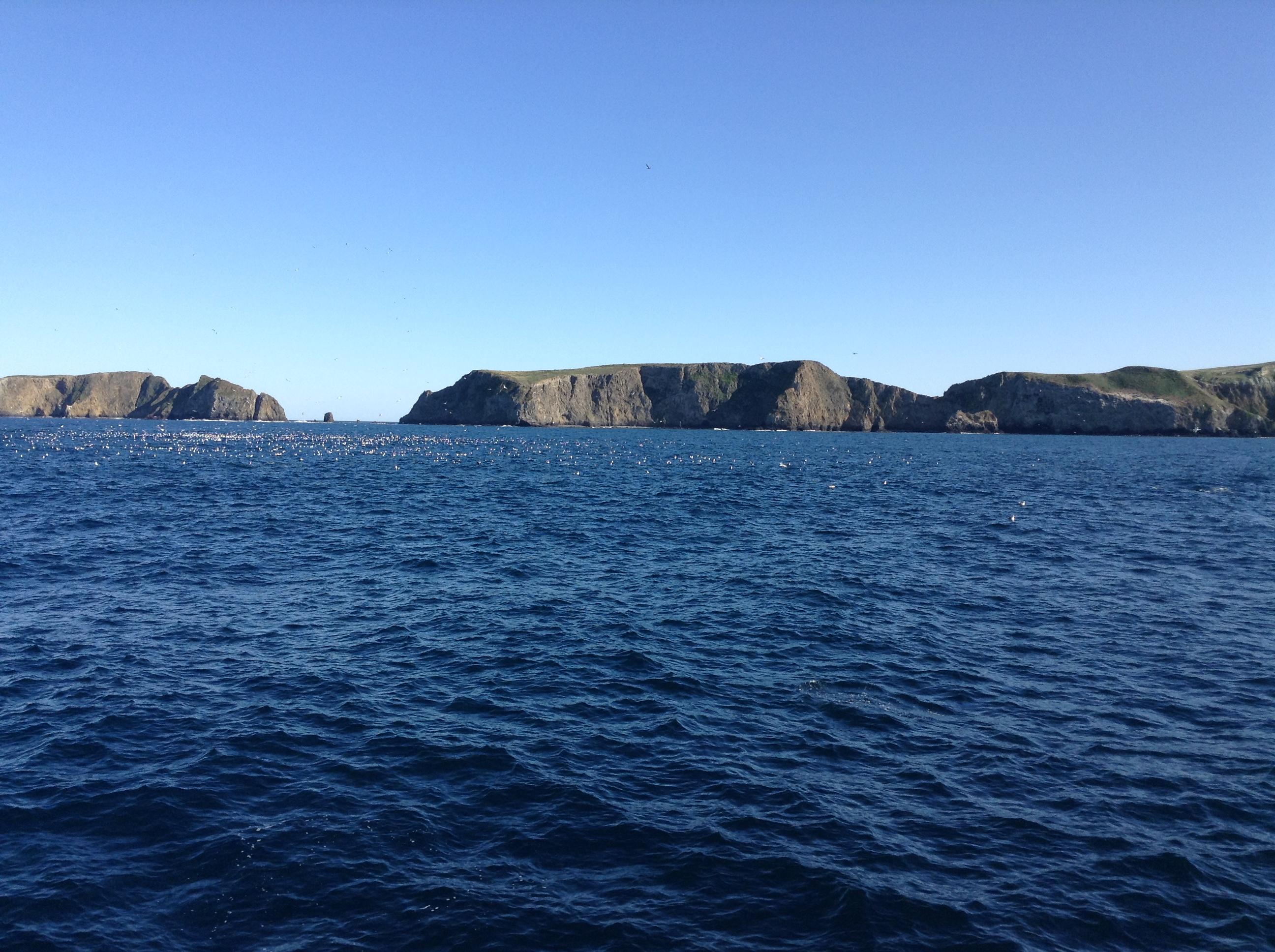 Channel Islands Cystic Fibrosis Pediatrics